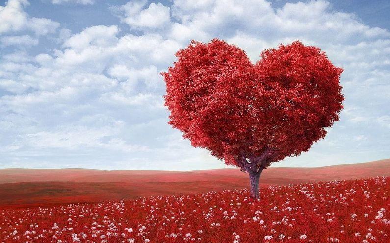 【ハートグラム診断】あなたの恋愛観や結婚観を診断できるWebテスト