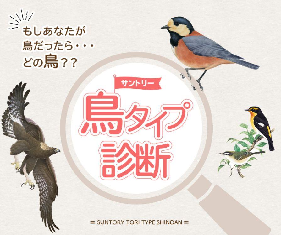 【鳥タイプ診断】サントリーが開発した、あなたに似た鳥を診断できるWebテスト